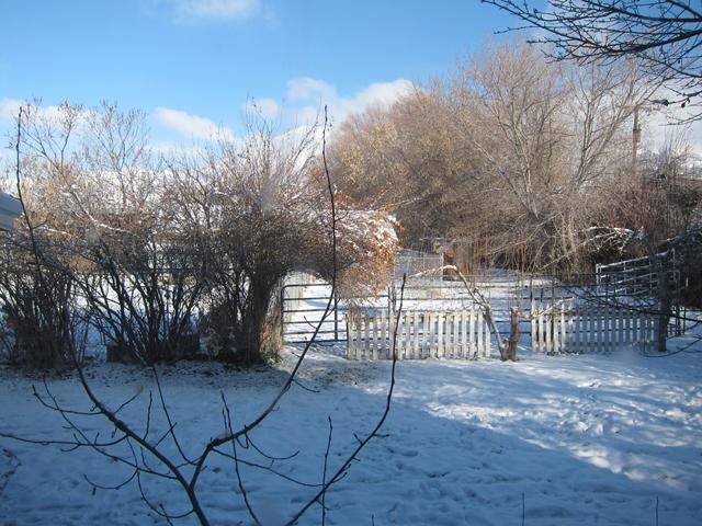 Christmas 2012 - A White Christmas